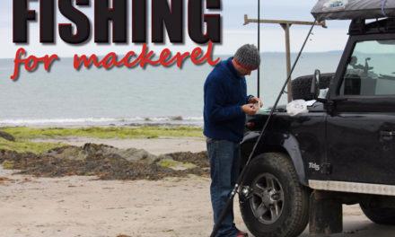 Fishing for Mackerel
