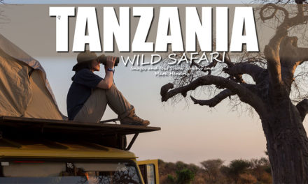 Wilde Safari - op Safari in Tanzania