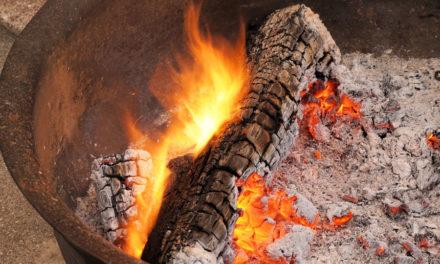 Het beste hout kiezen voor uw kampvuur